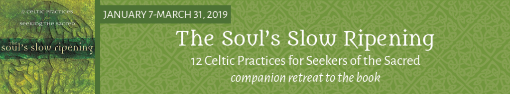 souls-slow-ripening-book-2019